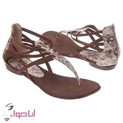 احذية نسائية (16)